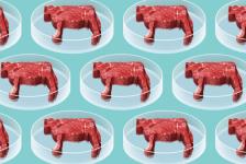 ¿Sabes qué es la carne limpia?